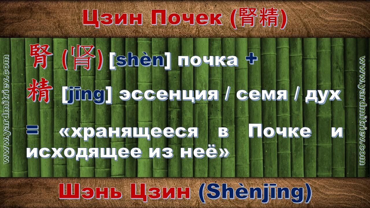 shen_jing_04