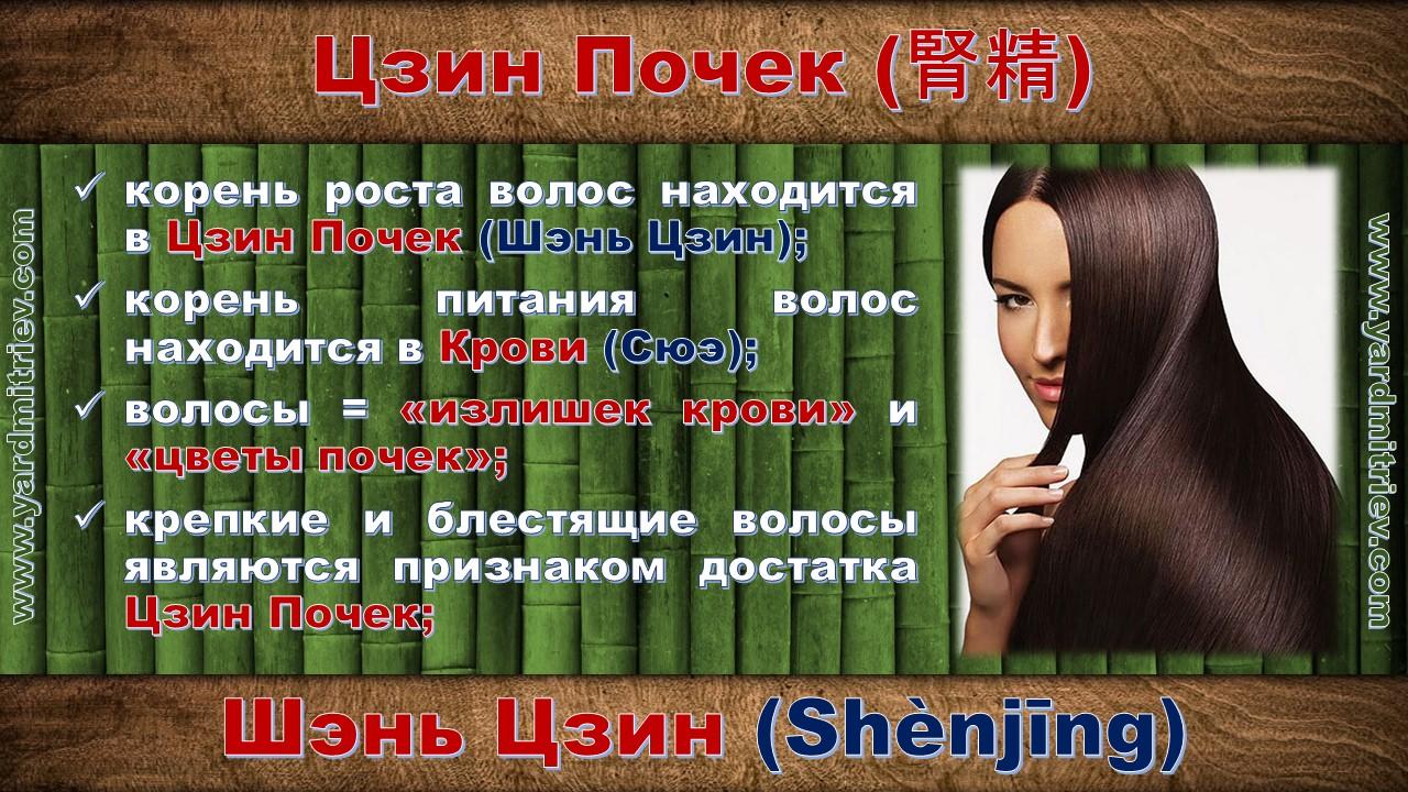 shen_jing_09
