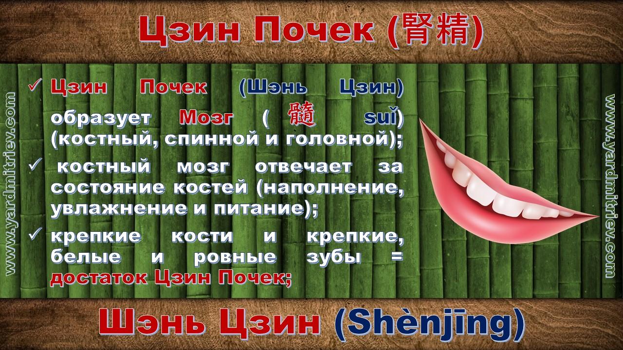 shen_jing_10