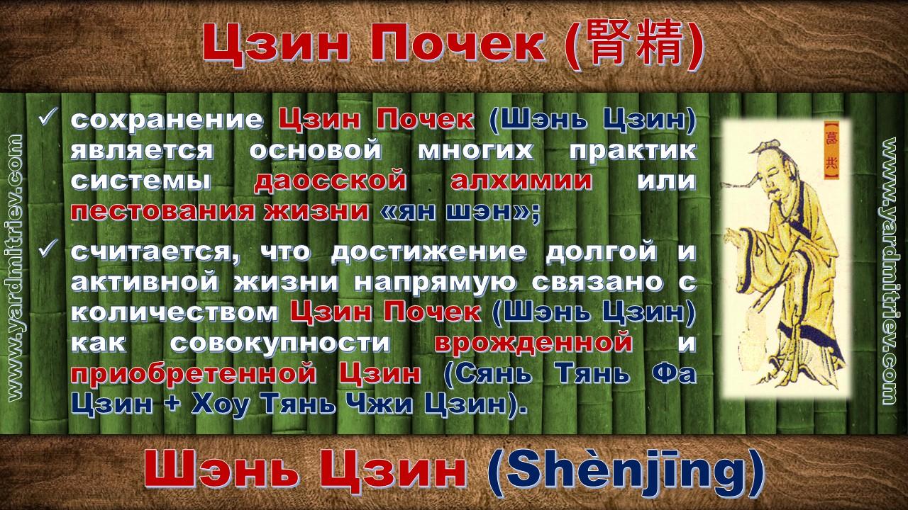 shen_jing_11
