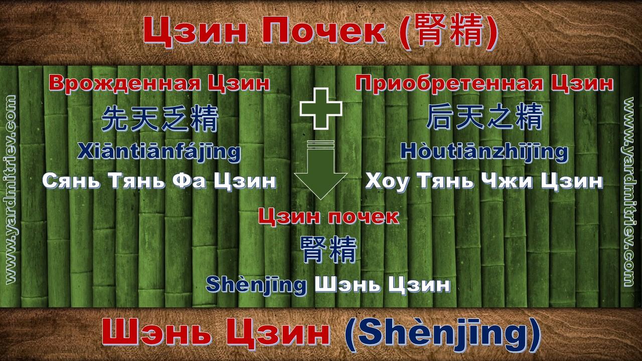 shen_jing_03