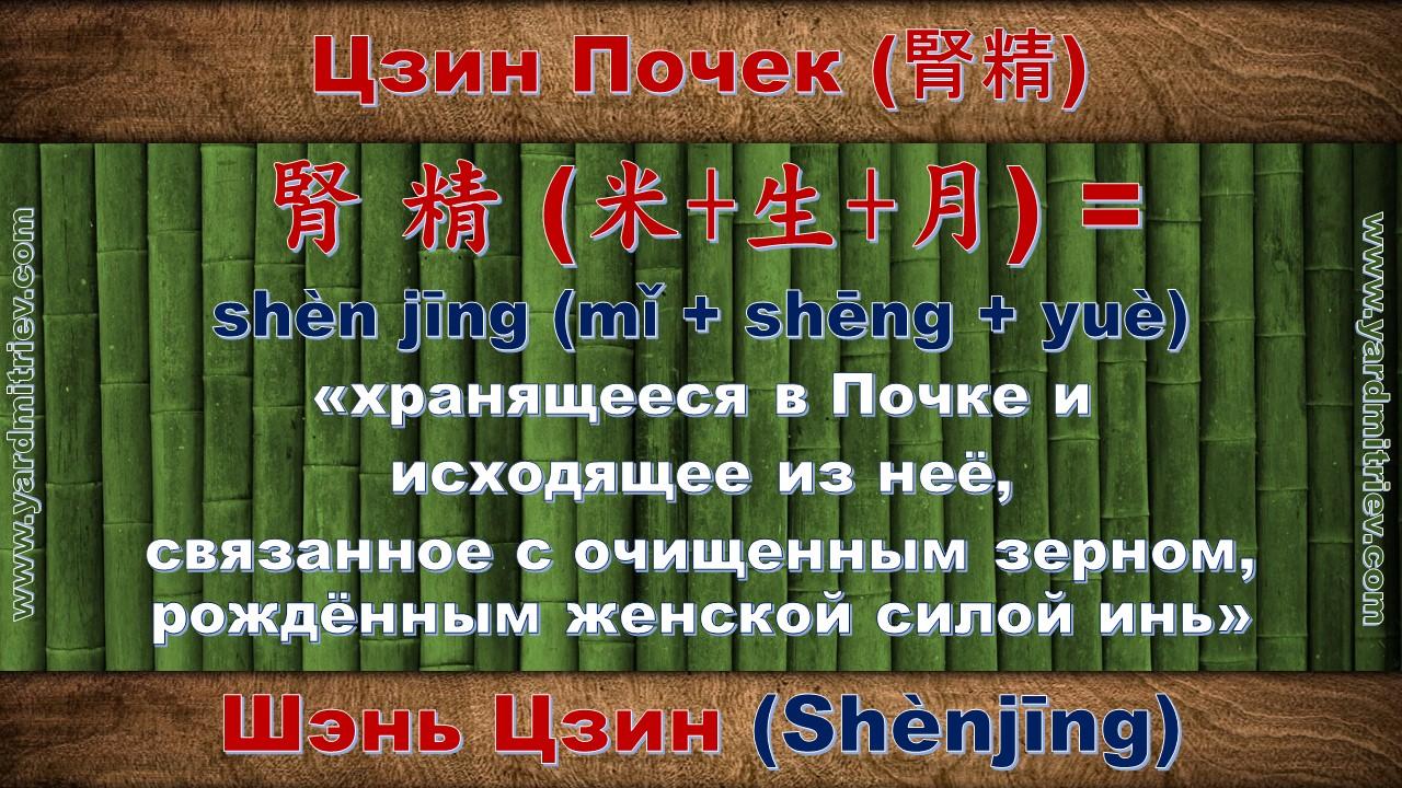 shen_jing_05