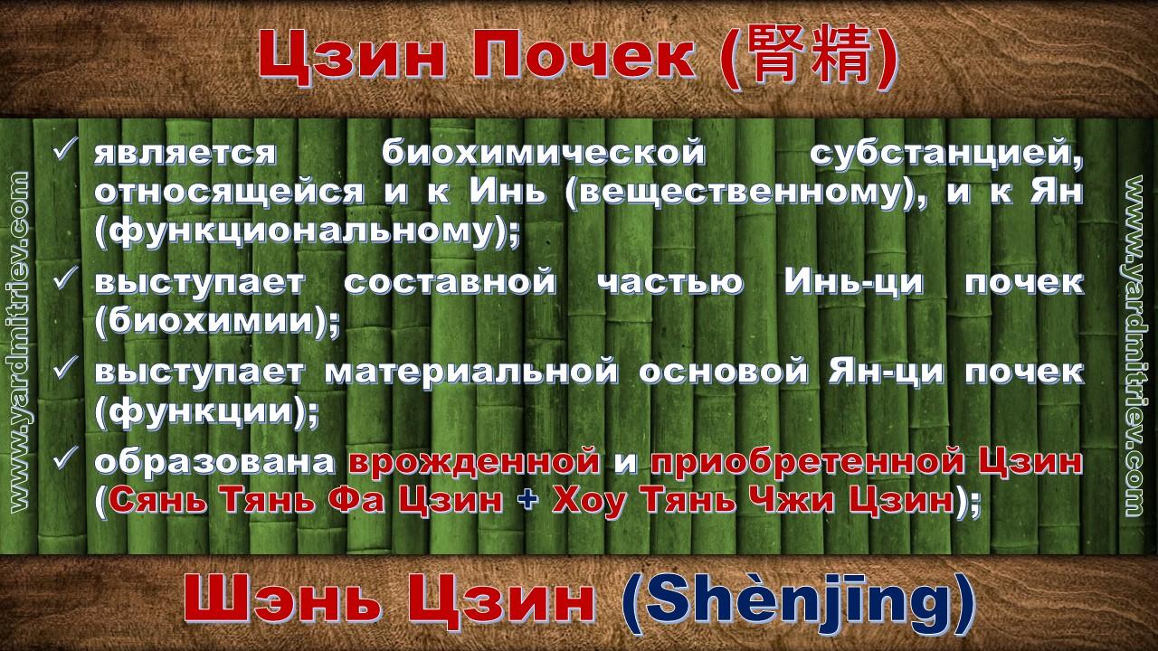 shen_jing_06