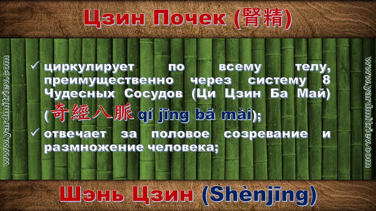 shen_jing_07