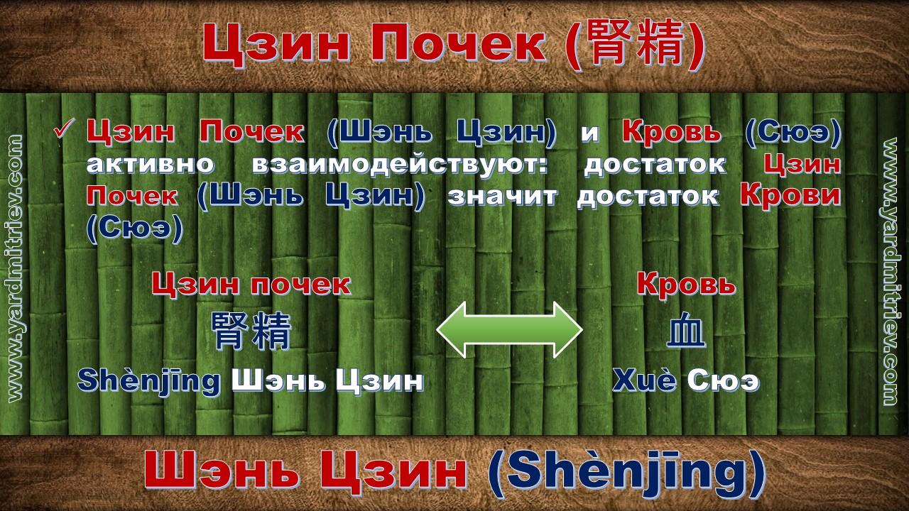 shen_jing_08